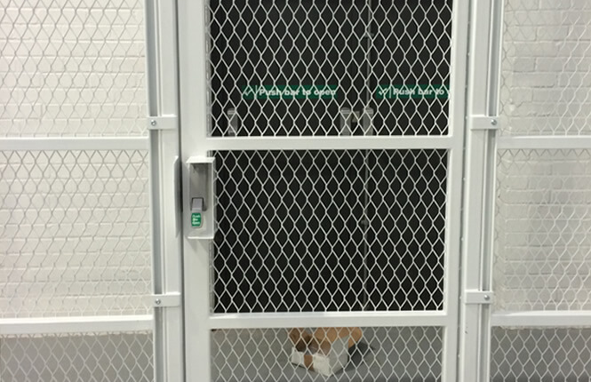 RSG4000 security enclosure with emergency fire exit gate.